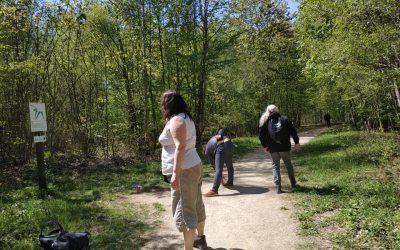 Sortie à la Forêt de Haye